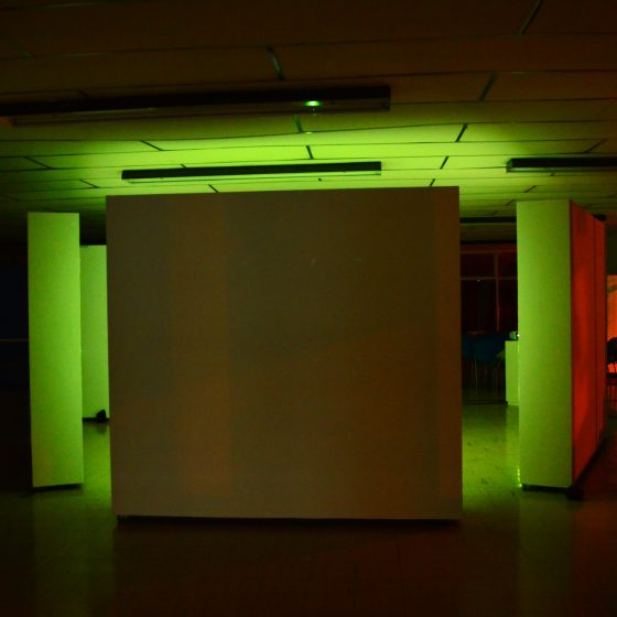 Fotografía del la Instalación Interactiva Vida